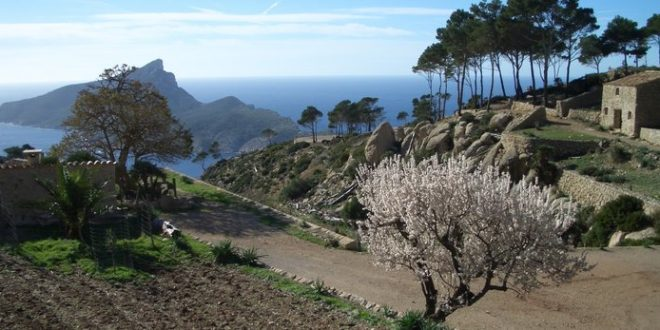 Walk of the month April: Monastic wandering from S'Arraco